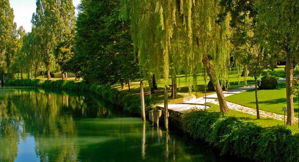 """""""Passeggiata naturalistica"""" lungo il Sile, le folaghe, l'Equisetum, la chiesa"""